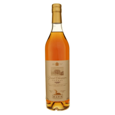 HINE, GRAND CHAMPAGNE COGNAC 1981 70cl